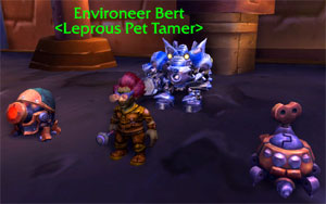 Environeer Bert and his team of Mechanical pets