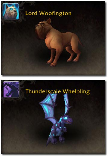 Lord Woofington and Thunderscale Whelpling
