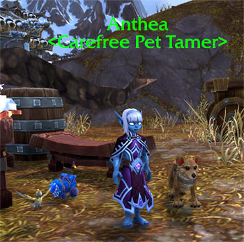 Anthea pet trainer