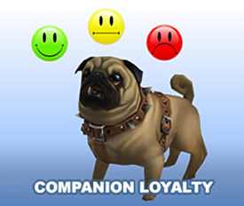 Companion Loyalty