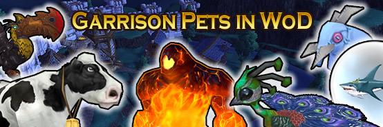 WoD Garrison Pets