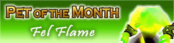 Fel Flame — Pet of the Month