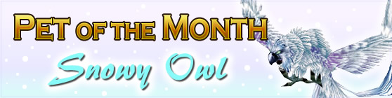 Pet of the Month: Snowy Owl