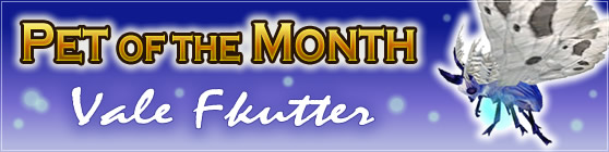 Vale Flitter - Pet of the Month January 2018