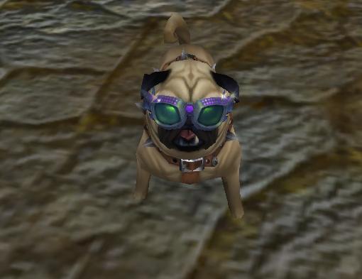 Perky Pug Lil' Starlet