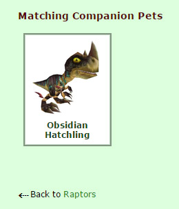 Matching Companion Pet