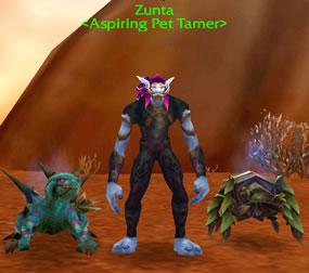 Pet Tamer NPC