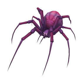 Amethyst Spiderling