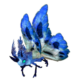 Cerulean Moth