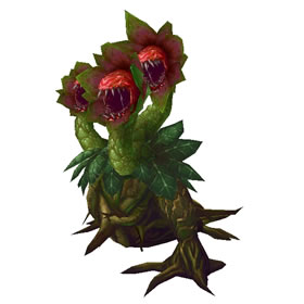 Doom Bloom