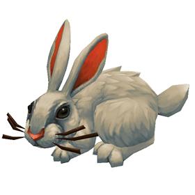 Elfin Rabbit