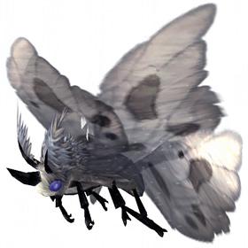 Grey Moth