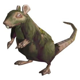 Leper Rat