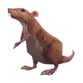 Long-tailed Mole