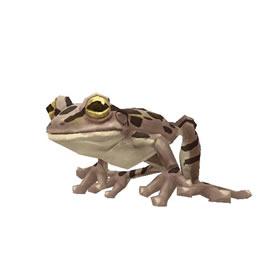 Lifelike Toad