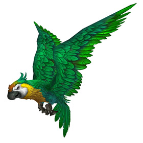 Proper Parrot