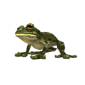 River Frog