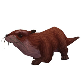 Sifang Otter Pup