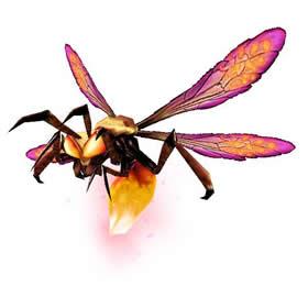 Swamplighter Firefly