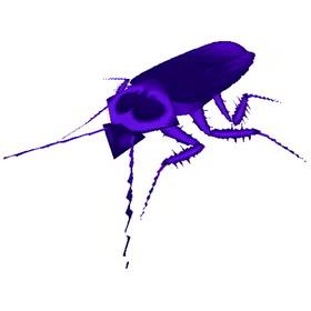 Void-Scarred Locust